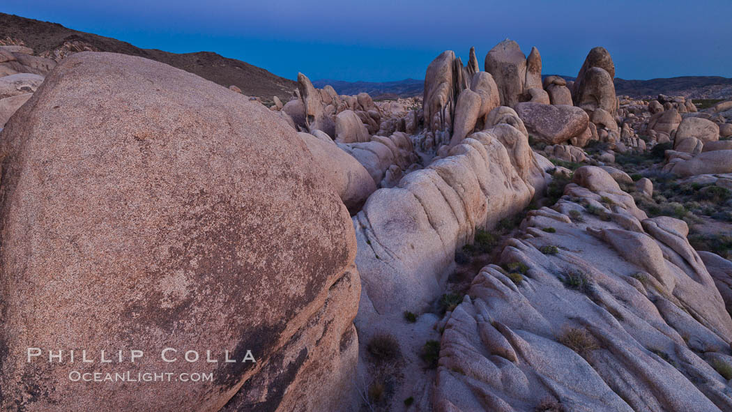 Ancient granite boulders at Joshua Tree National park, at sunset. Joshua Tree National Park, California, USA, natural history stock photograph, photo id 26795