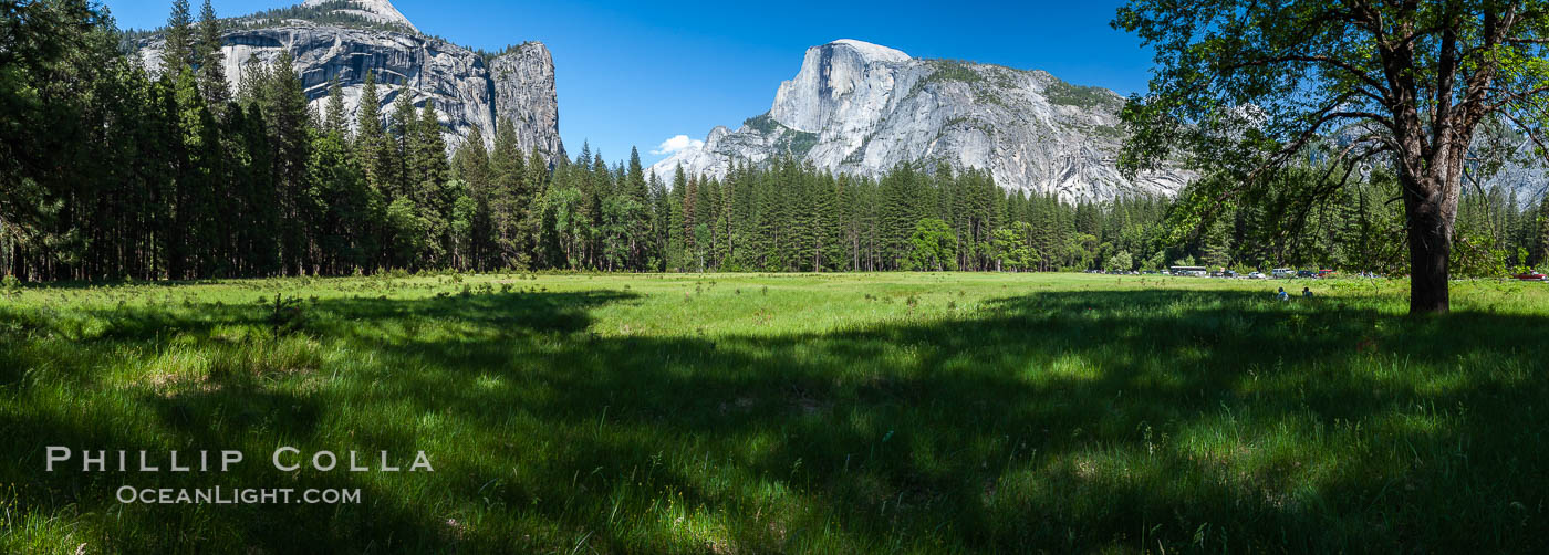 Half Dome (center) and Washington Column (left), late afternoon in spring, viewed from Ahwahnee Meadow, Yosemite National Park, California