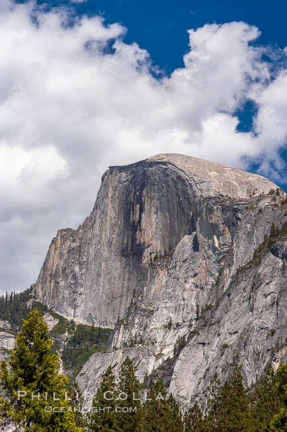 Half Dome, Yosemite National Park, Spring. Half Dome, Yosemite National Park, California, USA, natural history stock photograph, photo id 09185