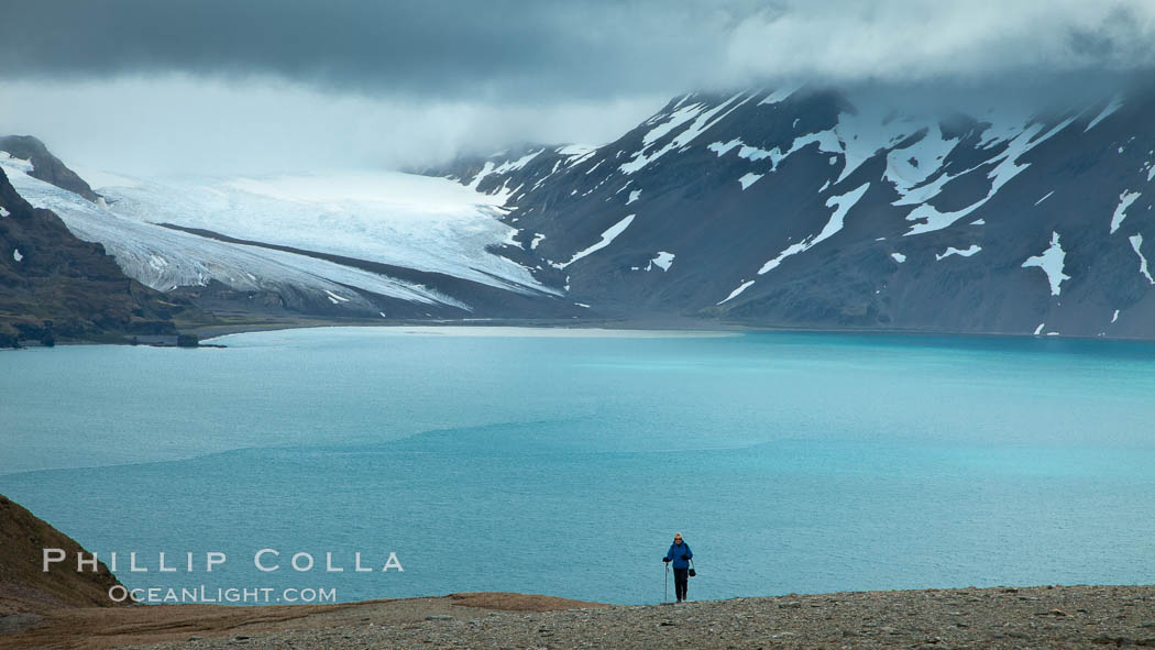A hiker ascends the slopes of South Georgia Island above Fortuna Bay