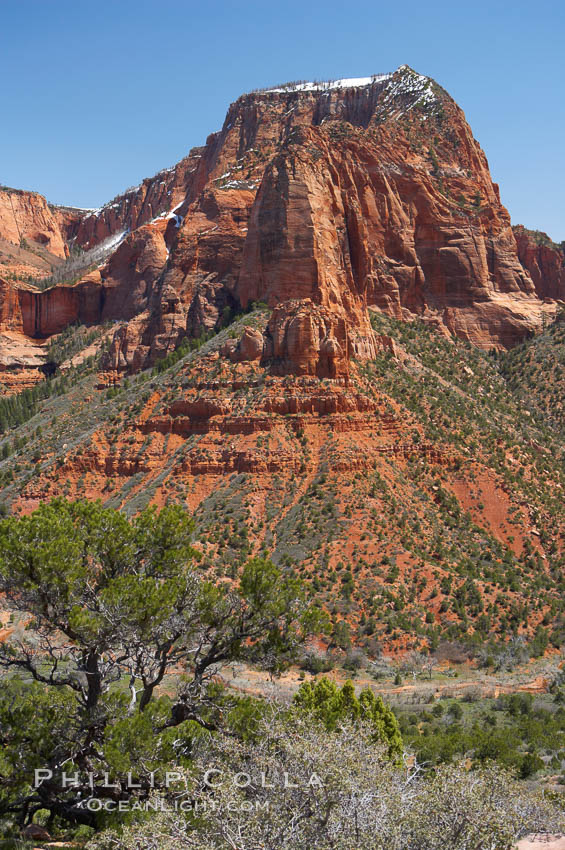 Kolob Canyon. Zion National Park, Utah, USA, natural history stock photograph, photo id 12482