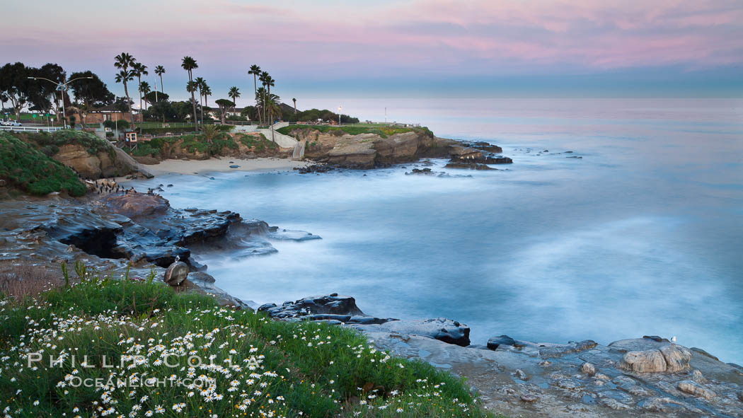 La Jolla Cove and earth shadow at dawn.  Just before sunrise the shadow of the Earth can seen as the darker sky below the pink sunrise