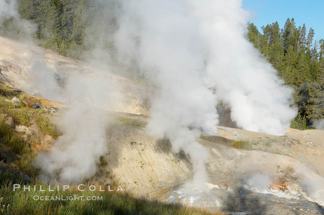 Ledge Geyser, vents releasing steam, in the Porcelain Basin area of Norris Geyser Basin. Norris Geyser Basin, Yellowstone National Park, Wyoming, USA, natural history stock photograph, photo id 13483
