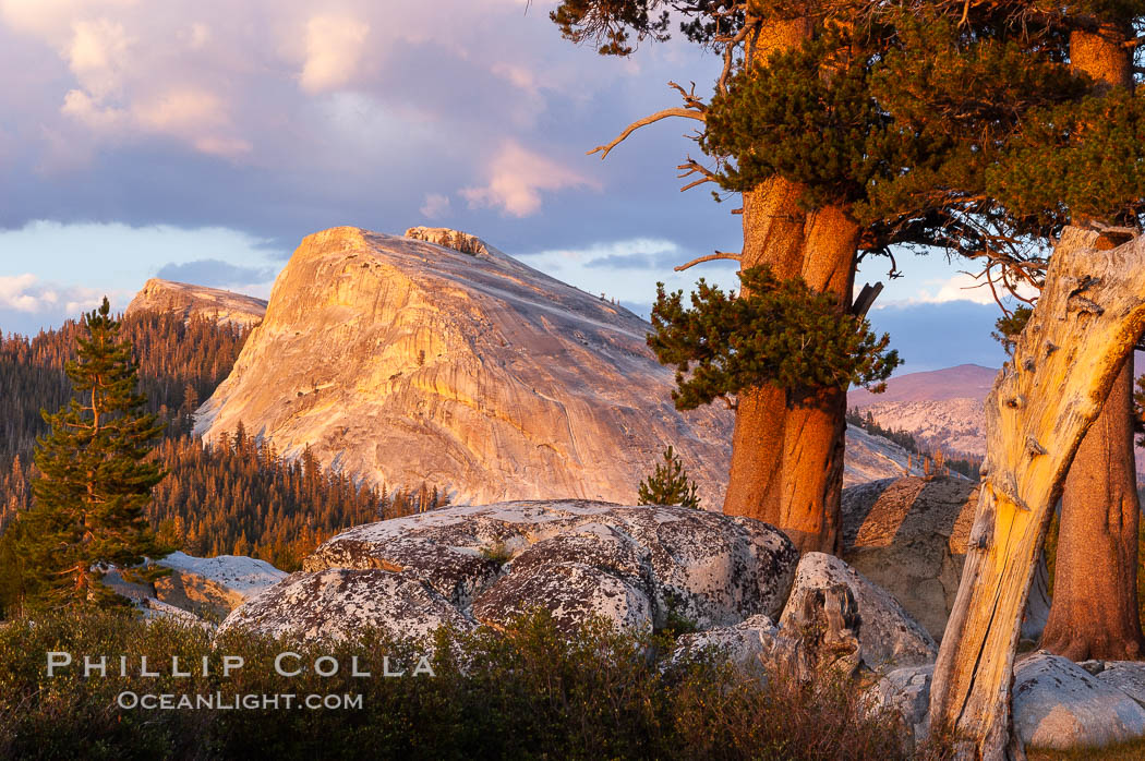Lembert Dome and late afternoon clouds rise above Tuolumne Meadows in the High Sierra, catching the fading light of sunset. Tuolumne Meadows, Yosemite National Park, California, USA, natural history stock photograph, photo id 09939