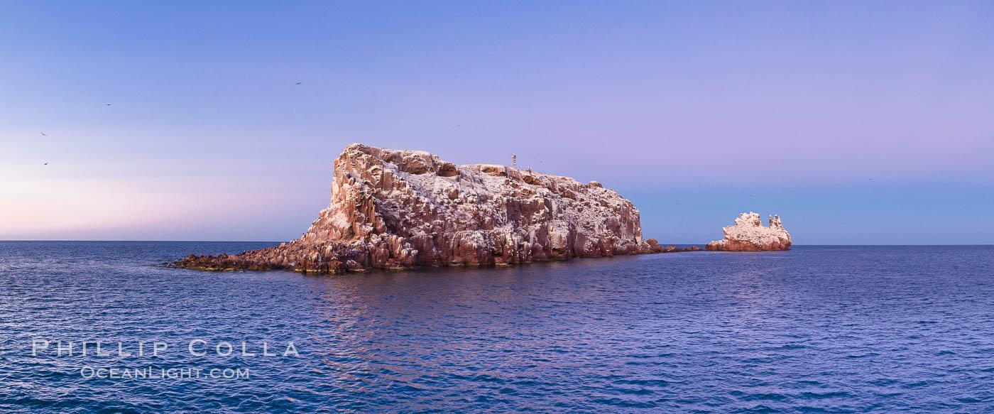 Los Islotes Island, Espiritu Santo Biosphere Reserve, Sea of Cortez, Baja California, Mexico