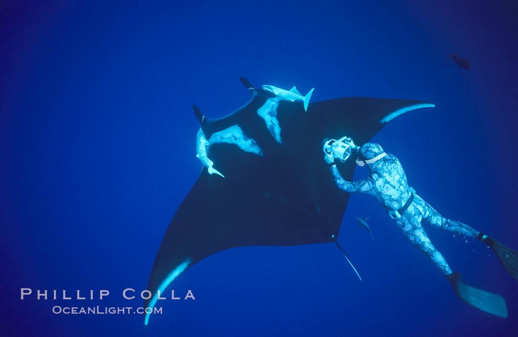 Manta ray and freediving videographer, Isla San Benedicto. San Benedicto Island, Baja California, Mexico, Manta birostris, natural history stock photograph, photo id 04831