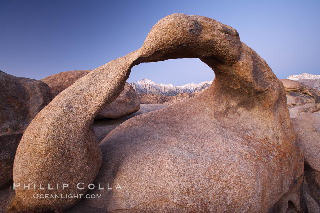 Mobius Arch at sunrise, with Mount Whitney (the tallest peak in the continental United States), Lone Pine Peak and snow-covered Sierra Nevada Range framed within the arch.  Mobius Arch is a 17-foot-wide natural rock arch in the scenic Alabama Hills Recreational Area near Lone Pine, California. Alabama Hills Recreational Area, California, USA, natural history stock photograph, photo id 21729