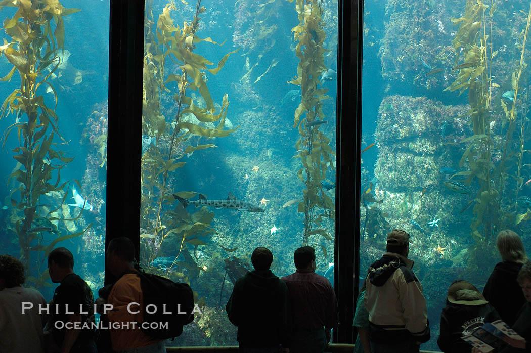 Aquarium In California