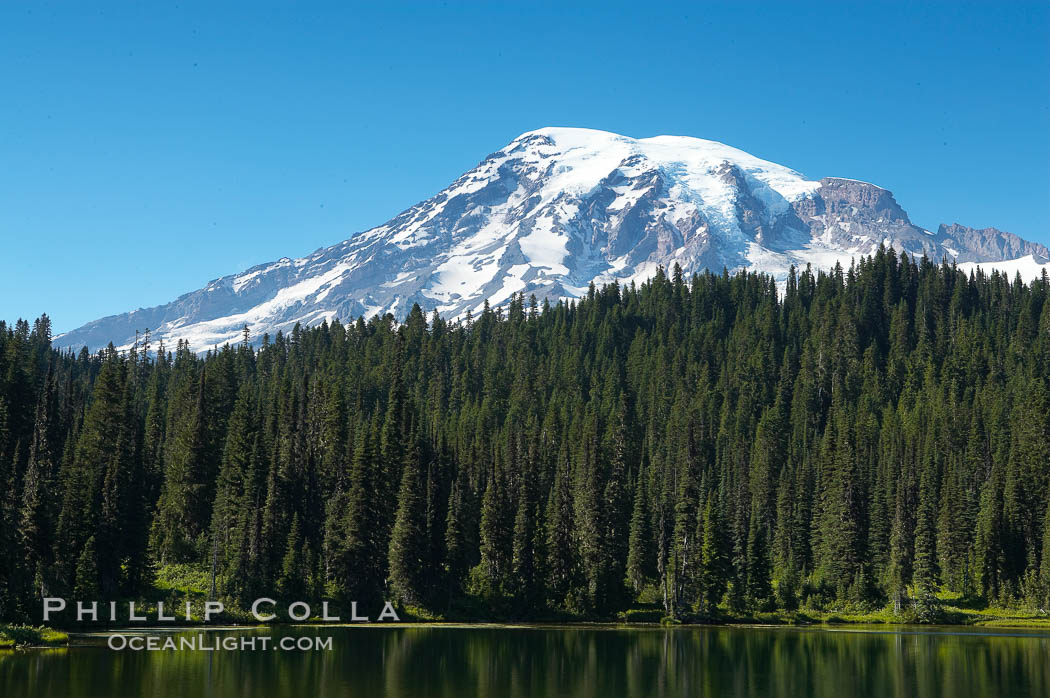 Mount Rainier is reflected in the calm waters of Reflection Lake, early morning. Mount Rainier National Park, Washington, USA, natural history stock photograph, photo id 13855