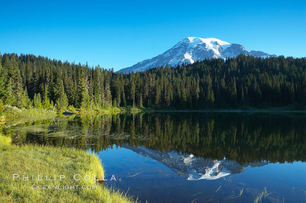 Mount Rainier is reflected in the calm waters of Reflection Lake, early morning. Mount Rainier National Park, Washington, USA, natural history stock photograph, photo id 13853