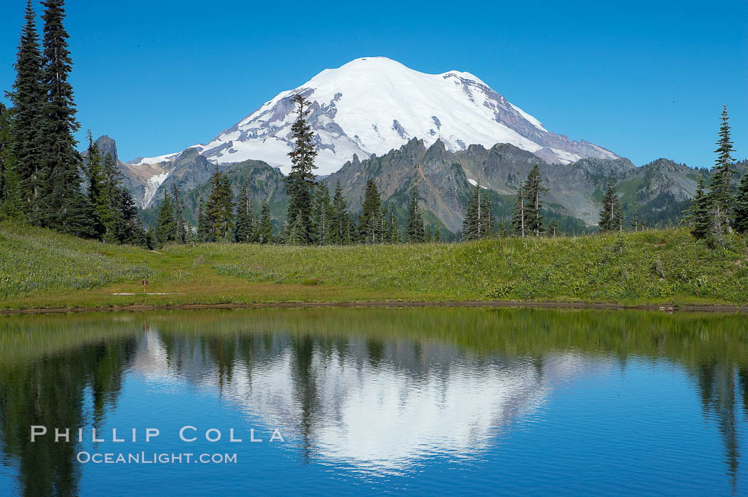 Mount Rainier is reflected in Upper Tipsoo Lake. Tipsoo Lakes, Mount Rainier National Park, Washington, USA, natural history stock photograph, photo id 13828
