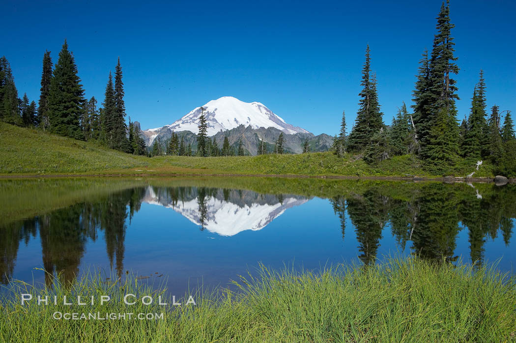 Mount Rainier is reflected in Upper Tipsoo Lake. Tipsoo Lakes, Mount Rainier National Park, Washington, USA, natural history stock photograph, photo id 13829