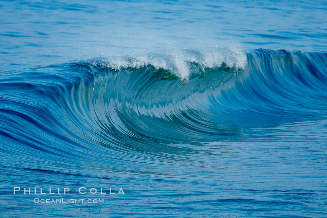 Stock photo of newport surf phillip colla natural history photography