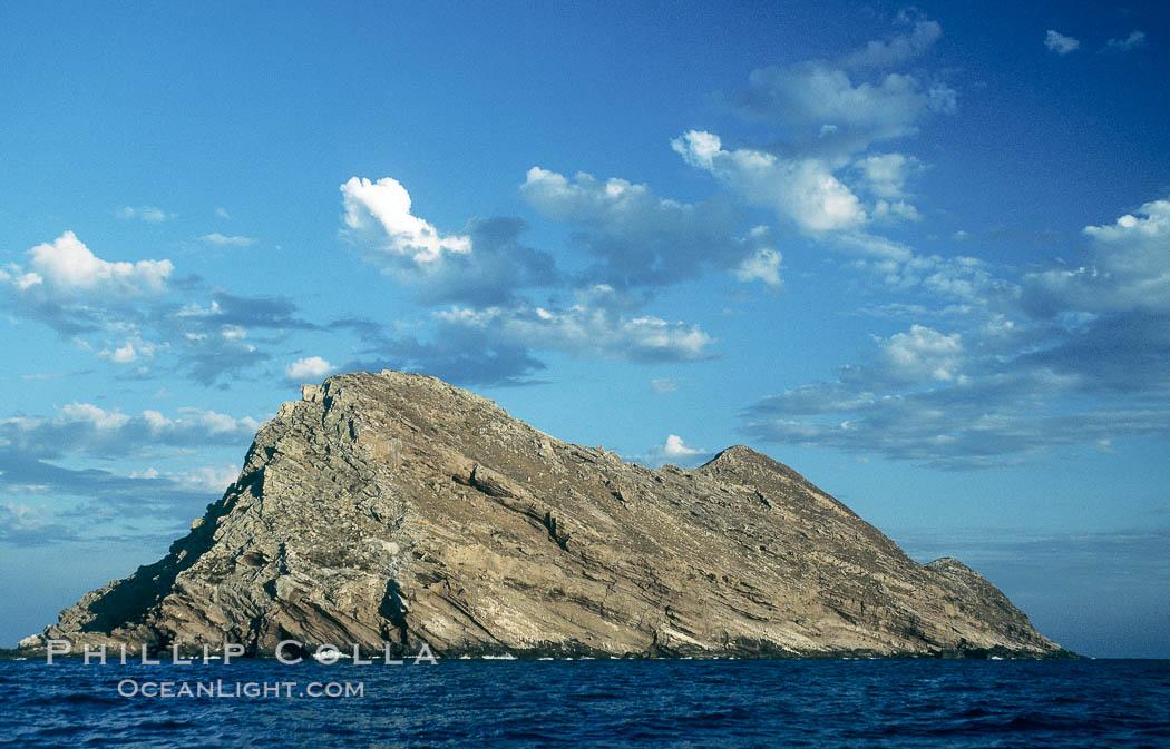 north-island-image-05514-248438.jpg