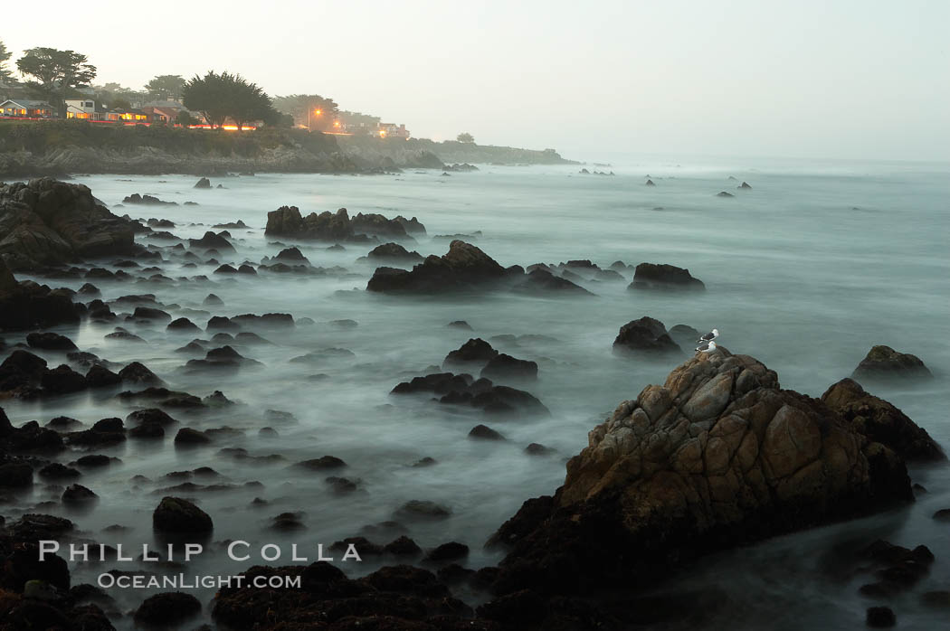 Waves breaking over rocks appear as a foggy mist in this time exposure.  Pacific Grove. Lovers Point, California, USA, natural history stock photograph, photo id 14913