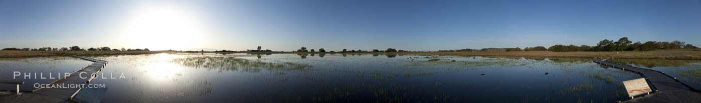 Panorama of a large vernal pool, full of water following spring rains, Santa Rosa Plateau, Santa Rosa Plateau Ecological Reserve, Murrieta, California