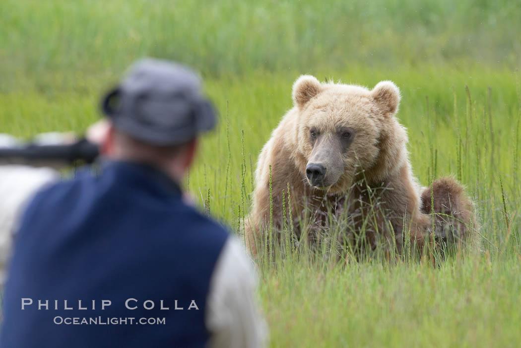 Photographer and brown bear. Lake Clark National Park, Alaska, USA, natural history stock photograph, photo id 19077