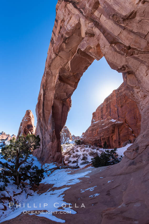 Pine Tree Arch.,  Copyright Phillip Colla, image #18186, all rights reserved worldwide.