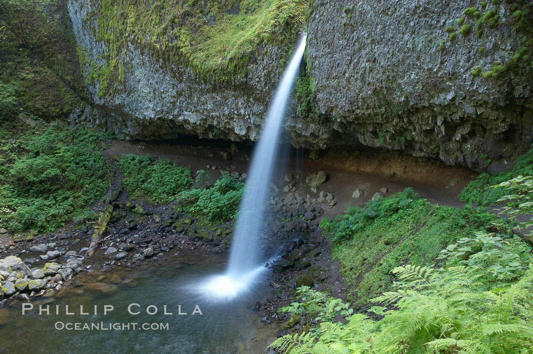 Ponytail Falls, where Horsetail Creeks drops 100 feet over an overhang below which hikers can walk. Columbia River Gorge National Scenic Area, Oregon, USA, natural history stock photograph, photo id 19340