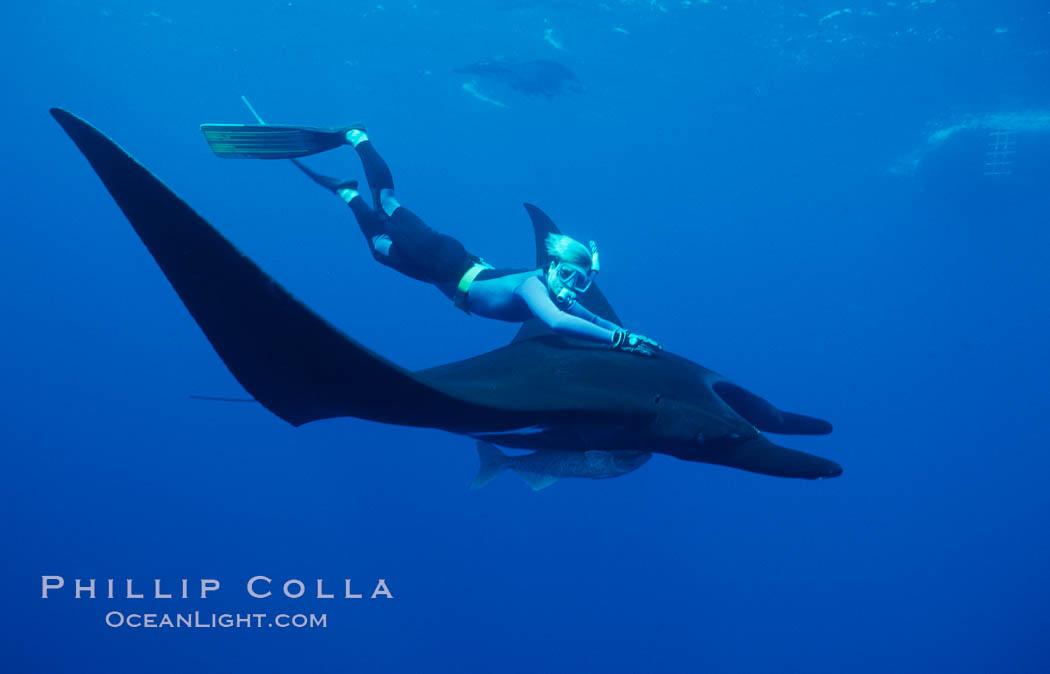 Manta ray and freediver. San Benedicto Island (Islas Revillagigedos), Baja California, Mexico, Manta birostris, natural history stock photograph, photo id 02460