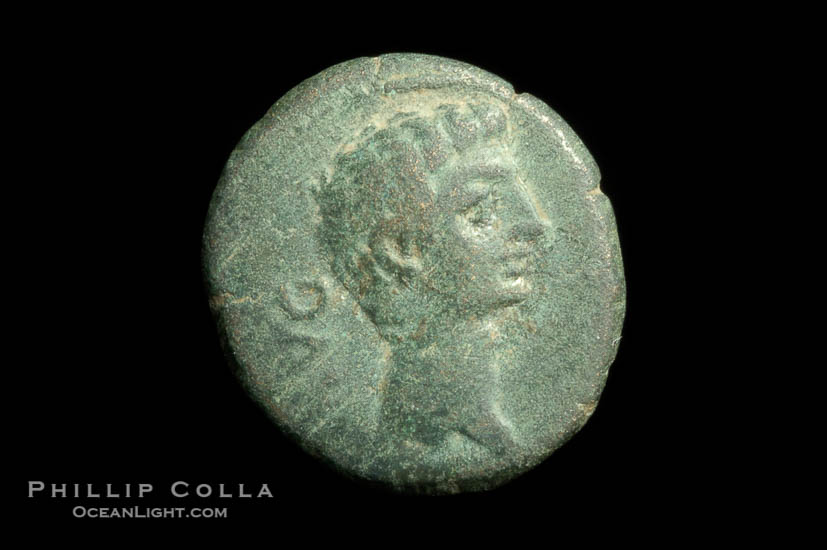 Roman emperor Augustus (27 B.C.-14 A.D.), depicted on ancient Roman coin (bronze, denom/type: AE18) (AE 18, VF; Provincial, Mysia, Parium.)., natural history stock photograph, photo id 06524