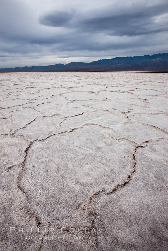 Salt polygons.  After winter flooding, the salt on the Badwater Basin playa dries into geometric polygonal shapes. Badwater, Death Valley National Park, California, USA, natural history stock photograph, photo id 25254