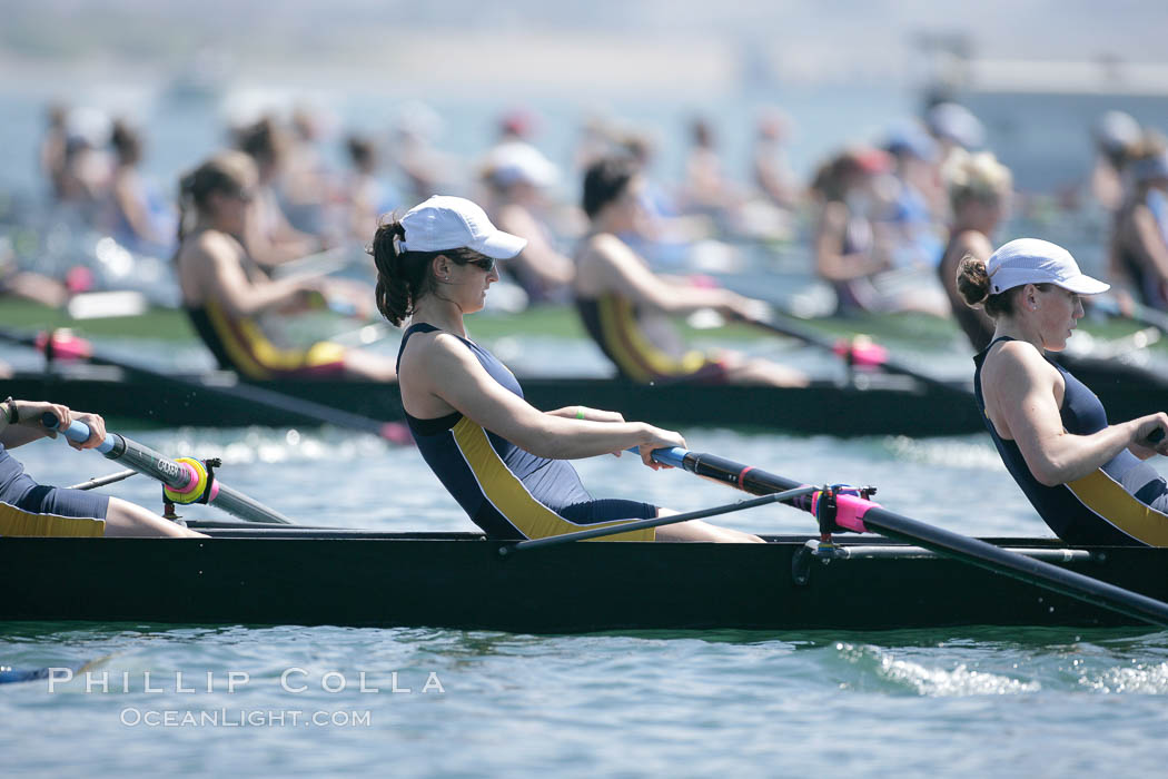 Cal (UC Berkeley) women en route to a second place finish in the Jessop-Whittier Cup final, 2007 San Diego Crew Classic. Mission Bay, San Diego, California, USA, natural history stock photograph, photo id 18646