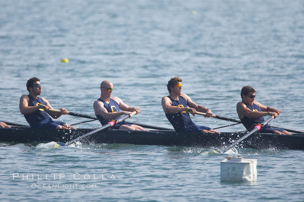 Cal (UC Berkeley) men's collegiate novice crew on their way to winning the Derek Guelker Memorial Cup, 2007 San Diego Crew Classic. Mission Bay, San Diego, California, USA, natural history stock photograph, photo id 18645