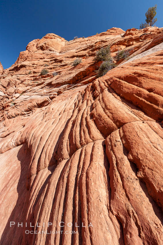 Sandstone formations.  Layers of sandstone are revealed by erosion in the Wire Pass narrows, Paria Canyon-Vermilion Cliffs Wilderness, Arizona