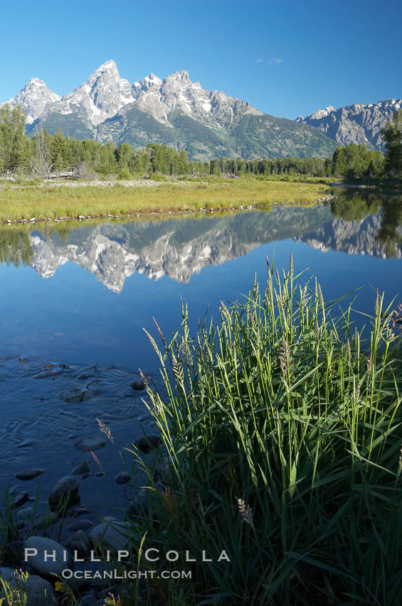 The Teton Range is reflected in the glassy waters of the Snake River at Schwabacher Landing. Schwabacher Landing, Grand Teton National Park, Wyoming, USA, natural history stock photograph, photo id 12990