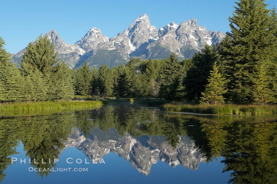 The Teton Range is reflected in the glassy waters of the Snake River at Schwabacher Landing. Schwabacher Landing, Grand Teton National Park, Wyoming, USA, natural history stock photograph, photo id 12984
