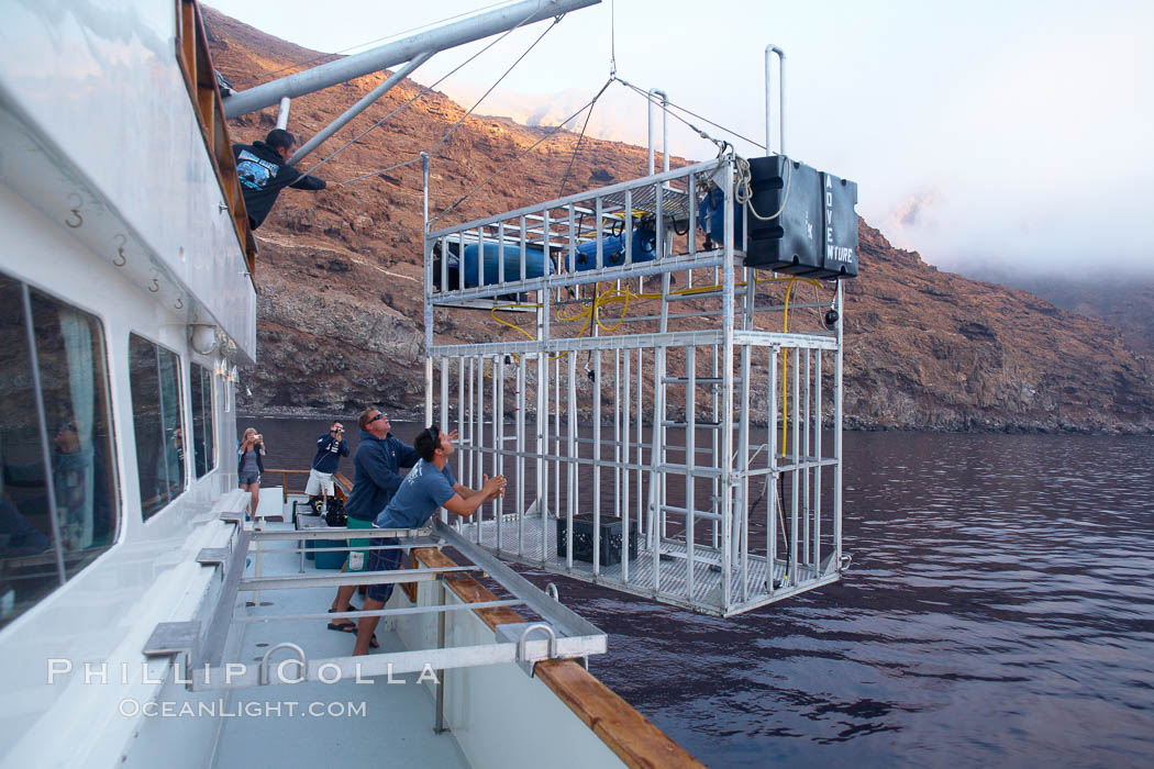 Lowering a shark cage into the water alongside M/V Horizon.  Large, strong aluminum cages protect divers while they are in the water viewing sharks.,  Copyright Phillip Colla, image #21380, all rights reserved worldwide.