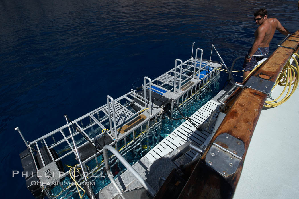 Shark cages in water, astern of M/V Horizon.  Large, strong aluminum cages protect divers while they are in the water viewing sharks.,  Copyright Phillip Colla, image #21370, all rights reserved worldwide.