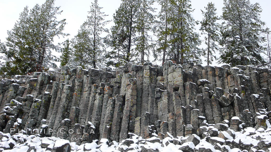 Sheepeater Cliffs, an example of columnar jointing in basalt due to shrinkage during cooling, Yellowstone National Park, Wyoming