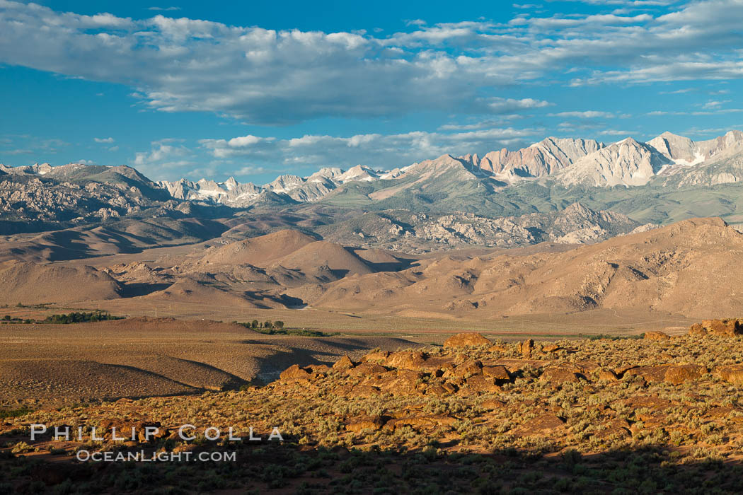 Sierra Nevada mountain range viewed from Volcanic Tablelands, near Bishop, California. USA, natural history stock photograph, photo id 26984
