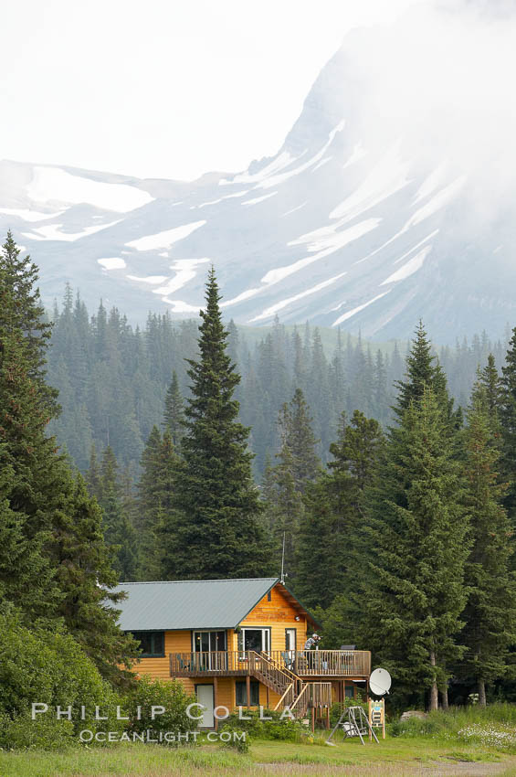 Silver Salmon Creek Lodge, spruce trees and Chigmit Range.,  Copyright Phillip Colla, image #19064, all rights reserved worldwide.