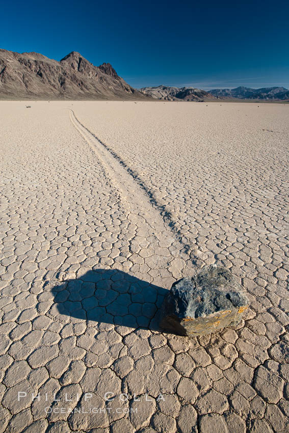 A sliding rock of the Racetrack Playa.  The sliding rocks, or sailing stones, move across the mud flats of the Racetrack Playa, leaving trails behind in the mud.  The explanation for their movement is not known with certainty, but many believe wind pushes the rocks over wet and perhaps icy mud in winter. Racetrack Playa, Death Valley National Park, California, USA, natural history stock photograph, photo id 25239