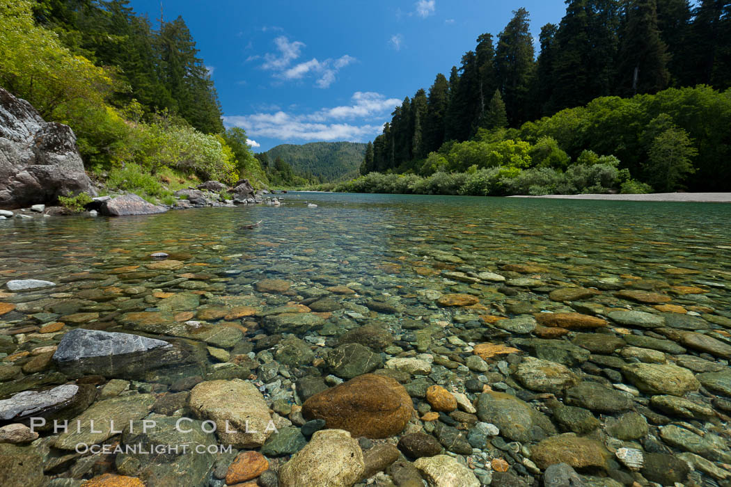 Smith River, the last major free flowing river in California.  Trees include the coast redwood, western hemlock, Sitka spruce, grand fir and Douglas fir. Jedediah Smith State Park, California, USA, natural history stock photograph, photo id 25852