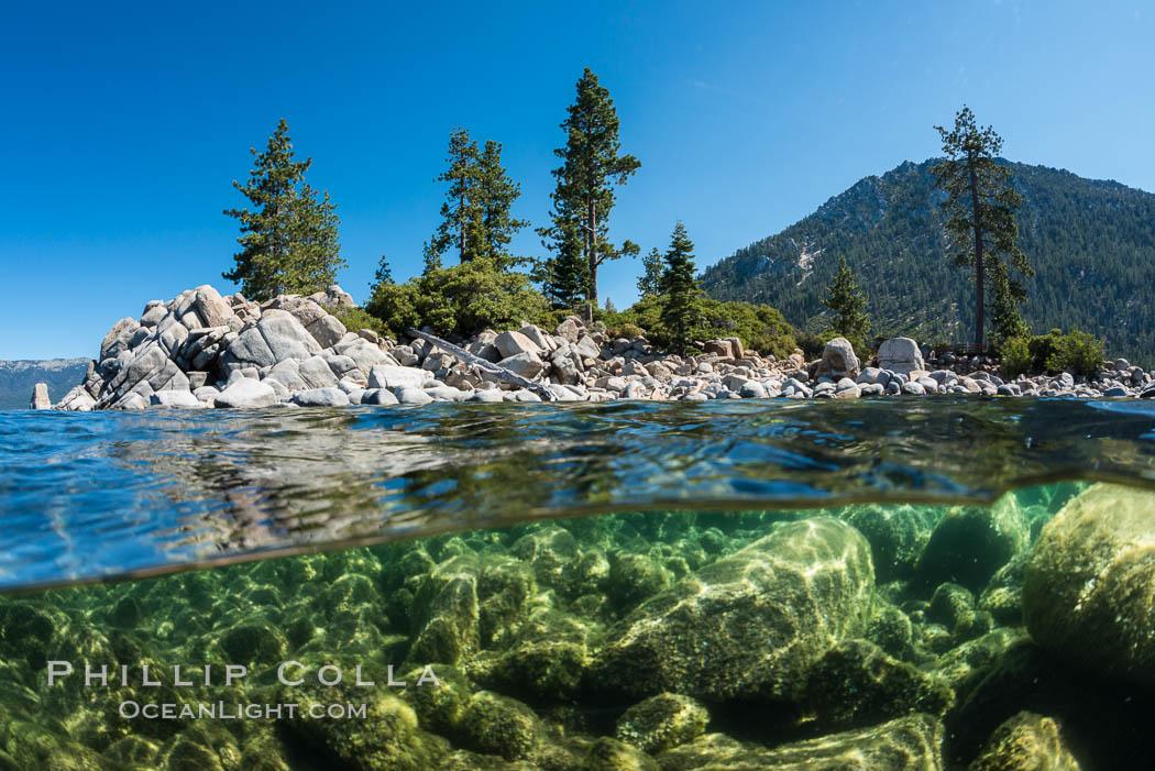 Split view of Trees and Underwater Boulders, Lake Tahoe, Nevada. Lake Tahoe, Nevada, USA, natural history stock photograph, photo id 32352
