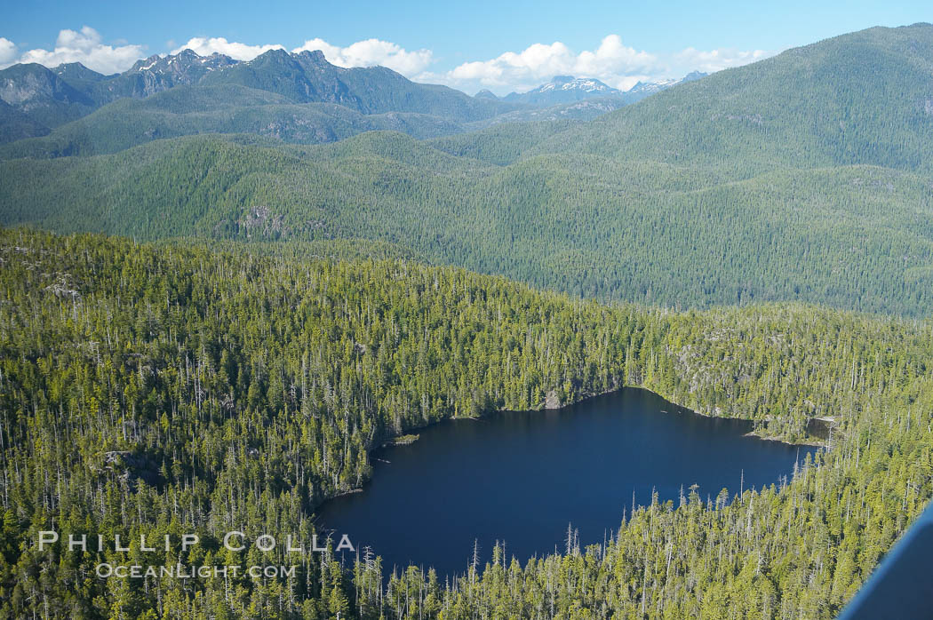 Densely forested Vancouver Island, aerial photo, near Tofino on the west coast of Vancouver Island. Tofino, British Columbia, Canada, natural history stock photograph, photo id 21117