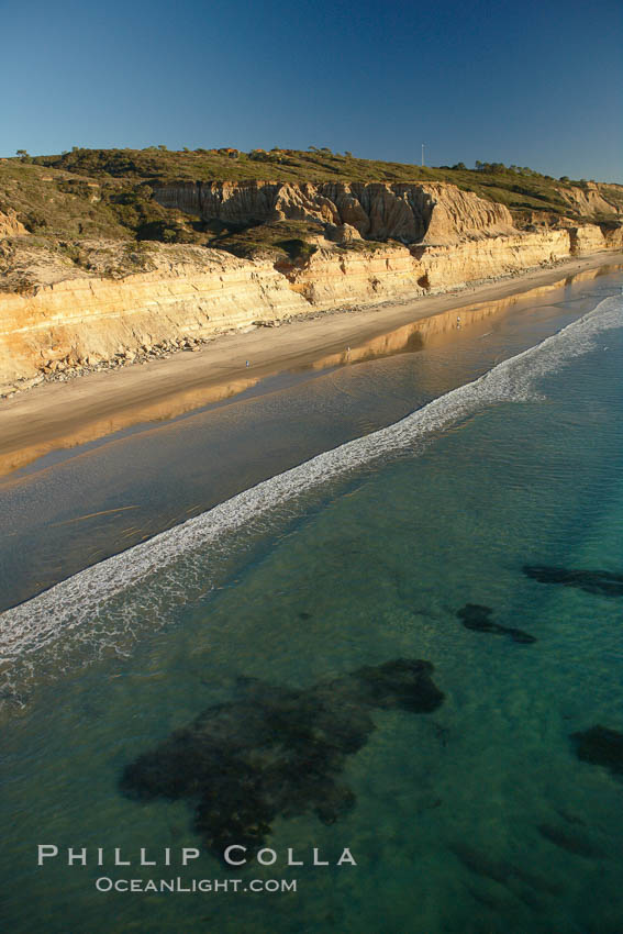Torrey Pines seacliffs, rising up to 300 feet above the ocean, stretch from Del Mar to La Jolla.  On the mesa atop the bluffs are found Torrey pine trees, one of the rare species of pines in the world.,  Copyright Phillip Colla, image #22319, all rights reserved worldwide.
