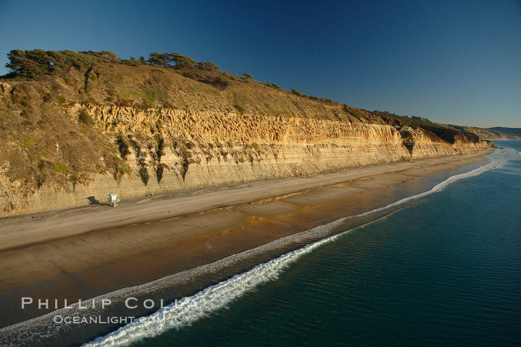 Torrey Pines seacliffs, rising up to 300 feet above the ocean, stretch from Del Mar to La Jolla.  On the mesa atop the bluffs are found Torrey pine trees, one of the rare species of pines in the world.,  Copyright Phillip Colla, image #22285, all rights reserved worldwide.