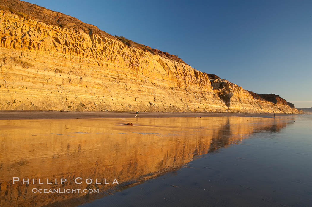 Sandstone cliffs rise above the beach at Torrey Pines State Reserve.,  Copyright Phillip Colla, image #14725, all rights reserved worldwide.