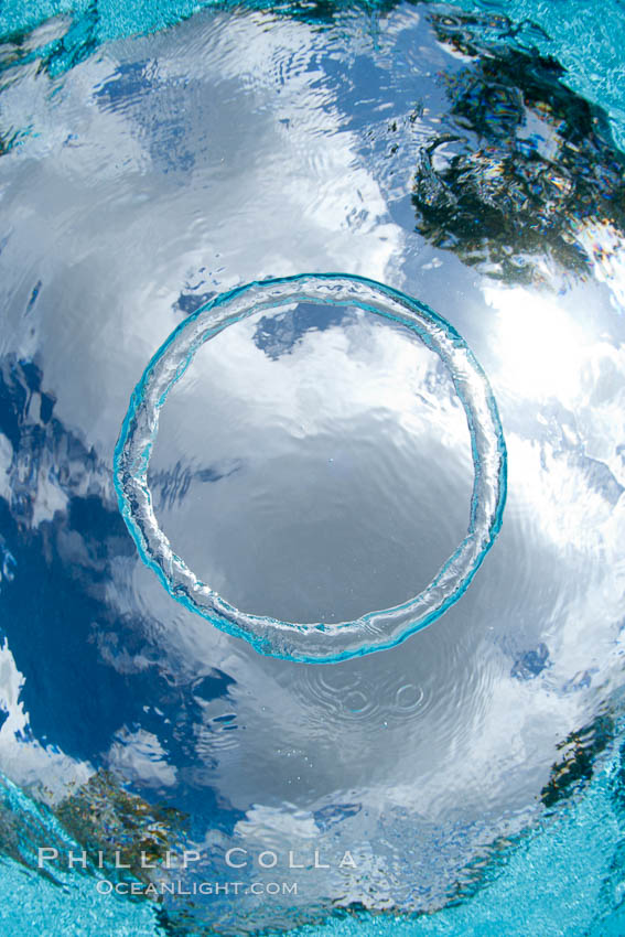 Underwater bubble ring a stable toroidal pocket of air natural