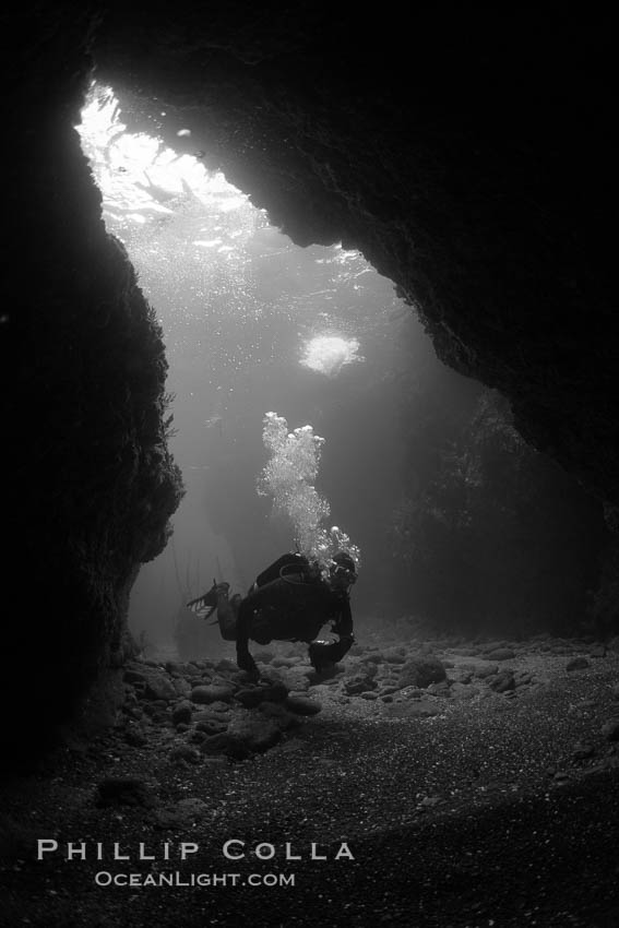 A SCUBA diver enters a submarine cavern at Santa Barbara Island, underwater cave. Santa Barbara Island, California, USA, natural history stock photograph, photo id 23423