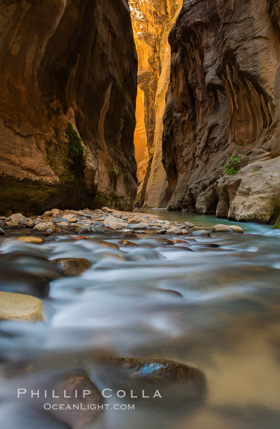 The virgin river narrows where the virgin river has carved deep