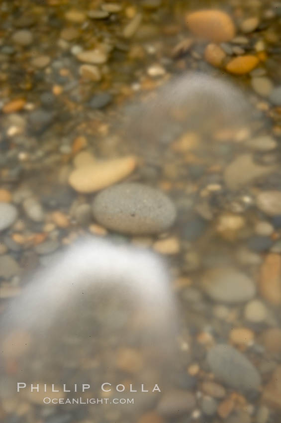 Water flows past beach cobblestones, blur.,  Copyright Phillip Colla, image #13794, all rights reserved worldwide.