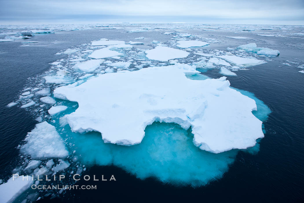 Pack ice and brash ice fills the Weddell Sea, near the Antarctic Peninsula.  This pack ice is a combination of broken pieces of icebergs, sea ice that has formed on the ocean. Southern Ocean, natural history stock photograph, photo id 24844