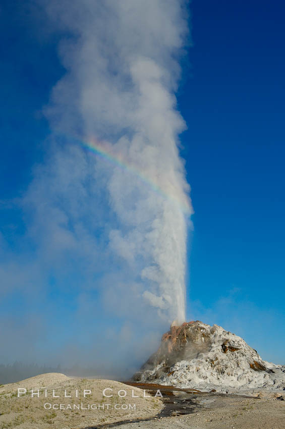 White Dome Geyser, with a faint rainbow visible in its mist, rises to a height of 30 feet or more, and typically erupts with an interval of 15 to 30 minutes.  It is located along Firehole Lake Drive.,  Copyright Phillip Colla, image #13541, all rights reserved worldwide.