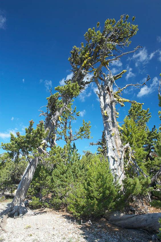 pin crater lake oregon - photo #47